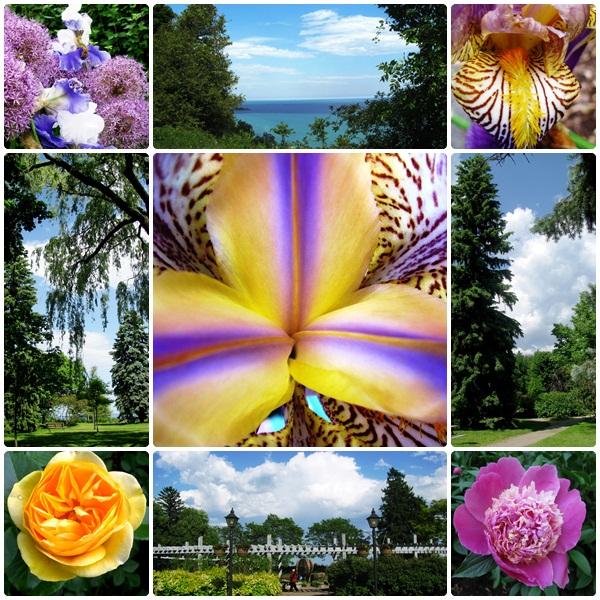 Loretta McClain Gardens