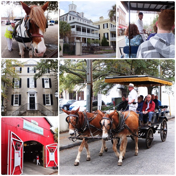A carriage ride in Charleston