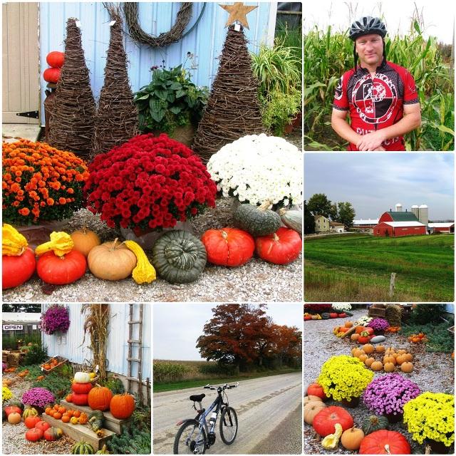 Bike ride in Bayfield