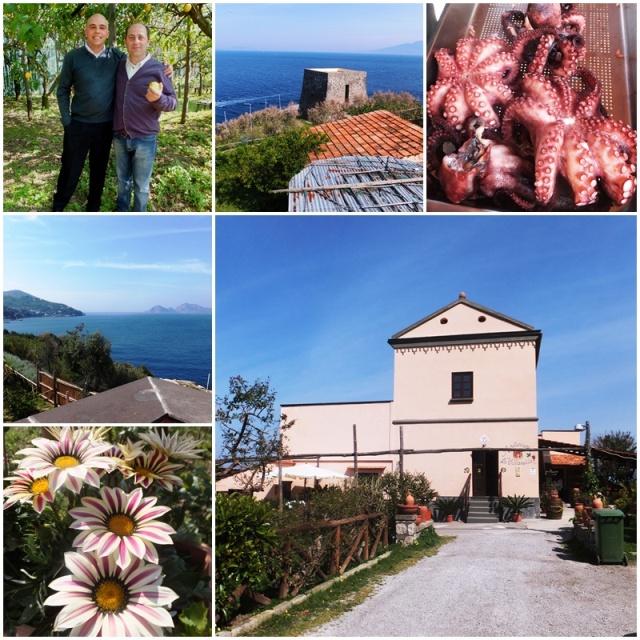 Villa Nella, a beautiful spot for agriturismo