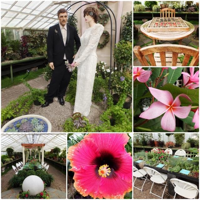 You can even have a wedding at the Buffalo Botanical Gardens