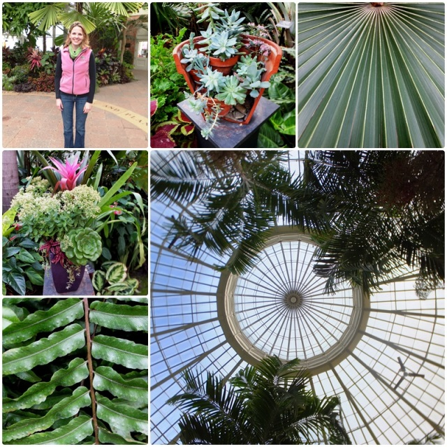The Palm Dome at the Buffalo Botanical Gardens