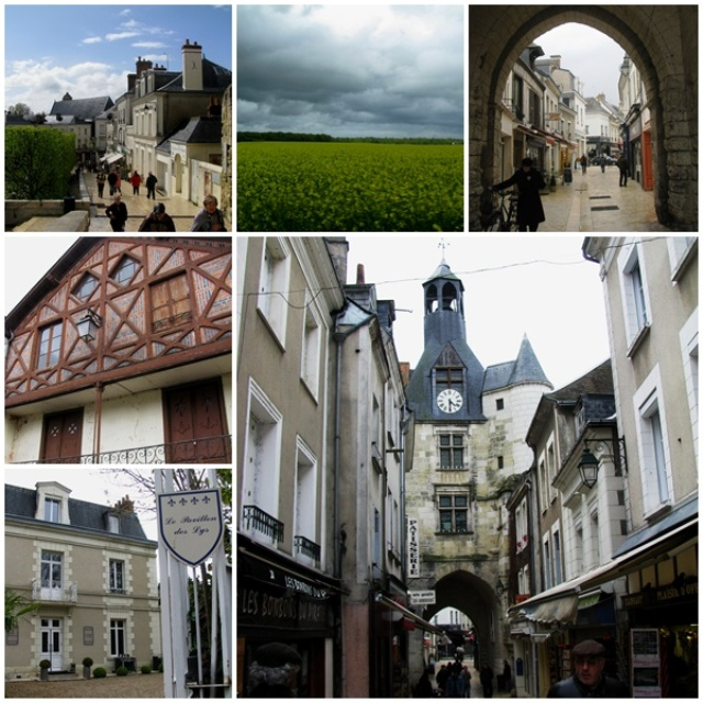 Loire Valley excursions: Amboise, a pretty medieval town