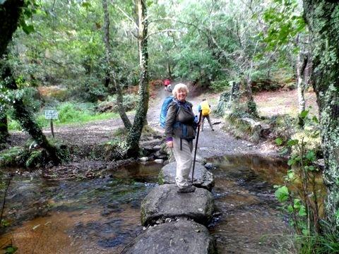 Ingrid in the woods past Sarria