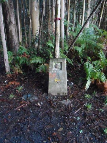 Camino markers along the way