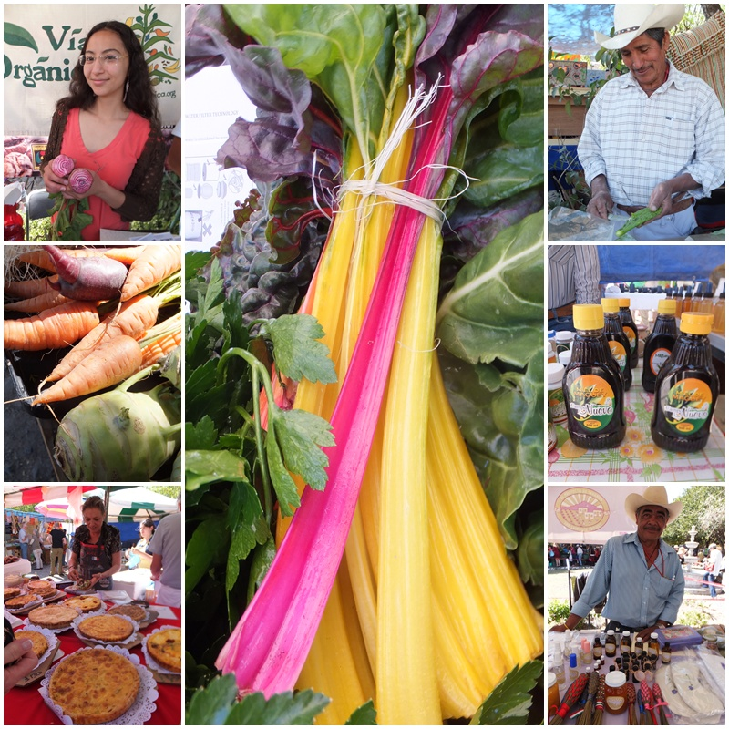 A great Saturday outing - the organic market in San Miguel de Allende