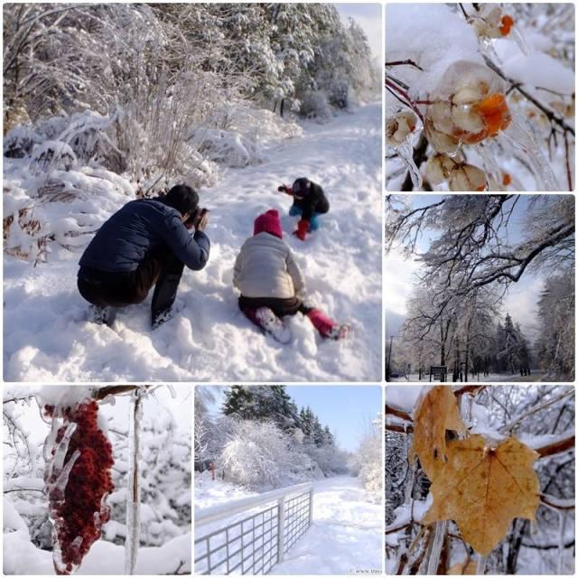 2014 - a harsh winter in Toronto