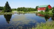 Eugenia Lake
