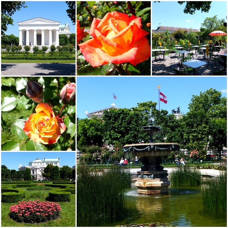 The gorgeous Volksgarten where roses where in full bloom
