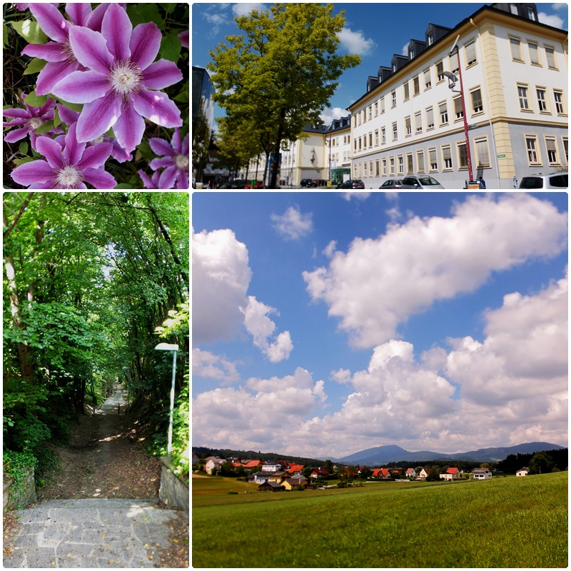 My last walk in Weiz