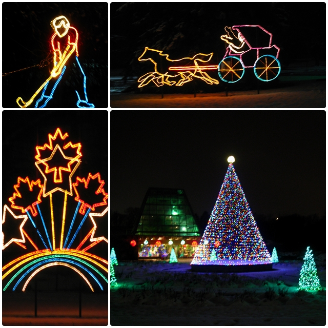 The Winter Festival of Lights brightens up dark winter nights