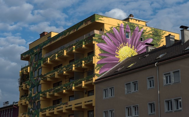 Kapfenberg has spent a lot of time, money and effort on beautification initiatives