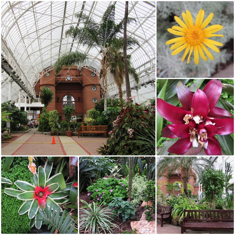 The Winter Gardens at the People's Palace