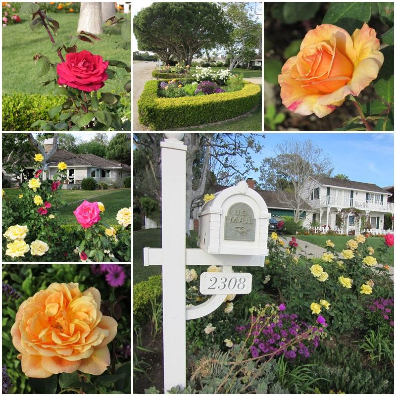 Fabulous gardens on the Palos Verdes Peninsula