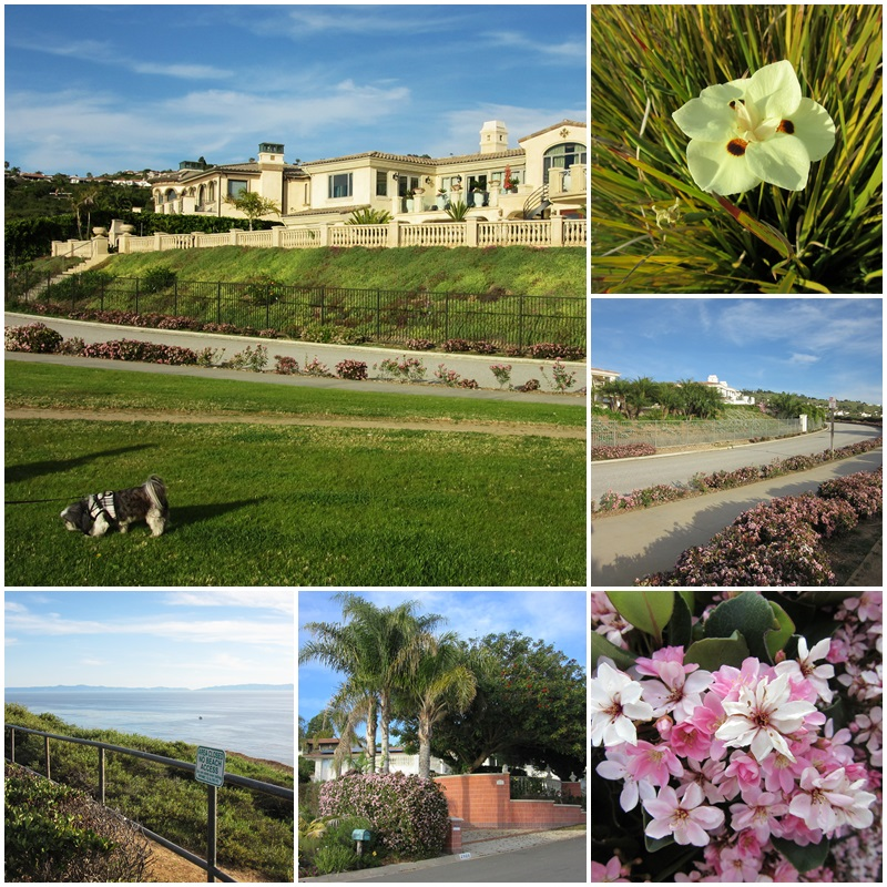 Views of Catalina Island from the Palos Verdes Peninsula