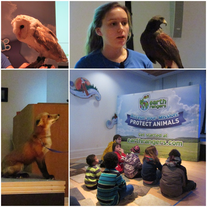 The Earth Rangers presentation at the Niagara Falls History Museum