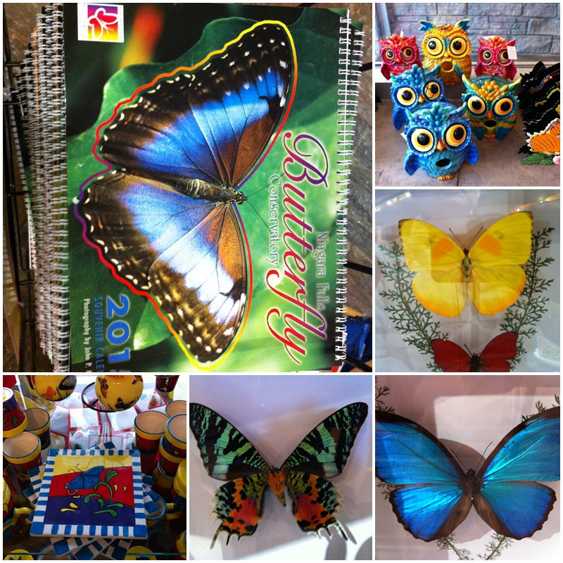 The Butterfly Conservatory's gift shop features all sorts of nice gifts